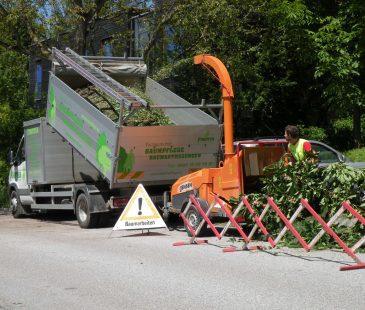 Grünschnitt wird verkleinert und abtransportiert